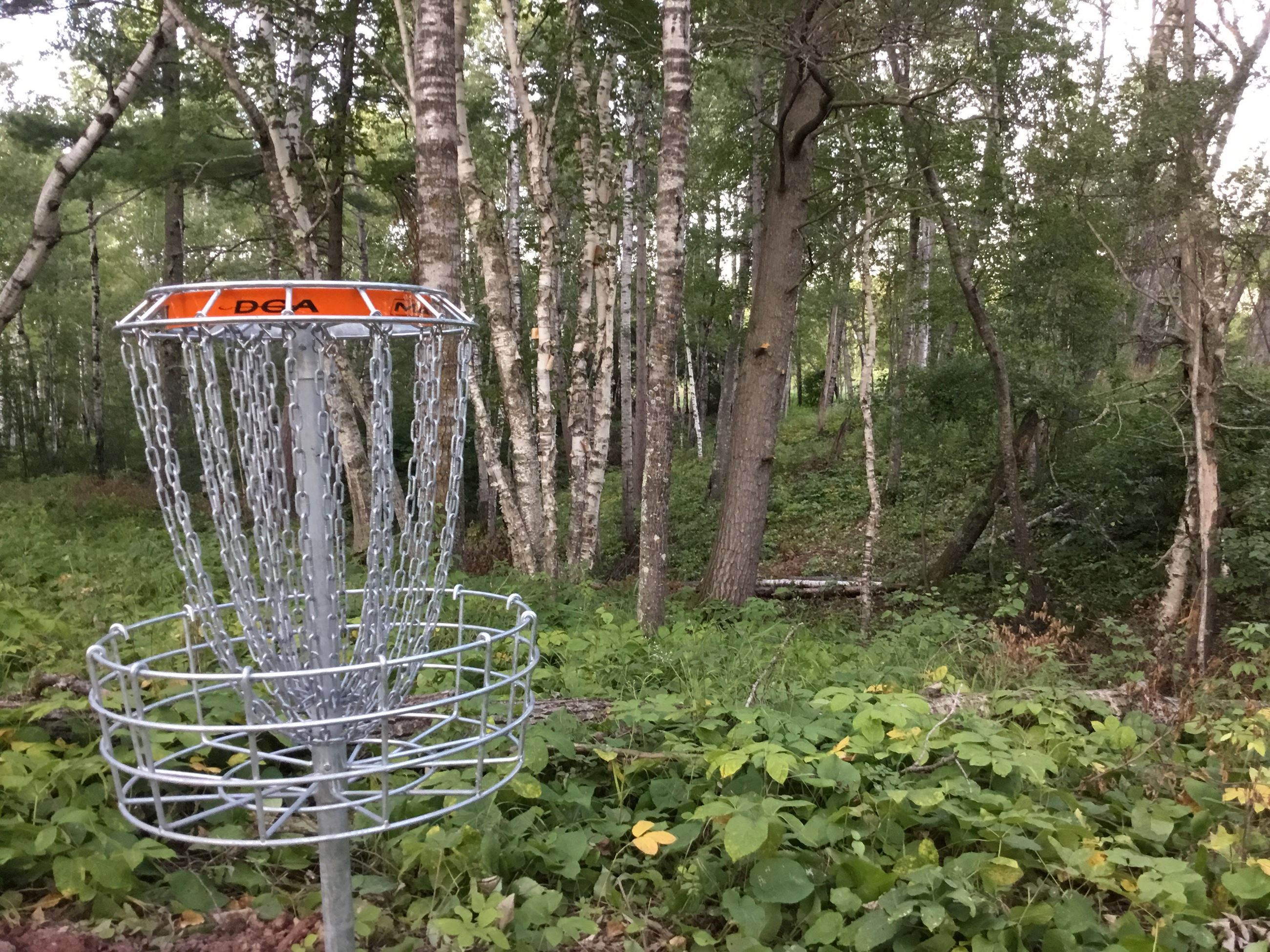 A disc golf basket on the Superior Municipal Forest disc golf course